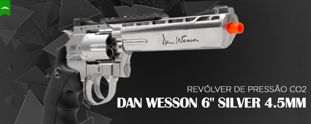 Dan Wesson Silver